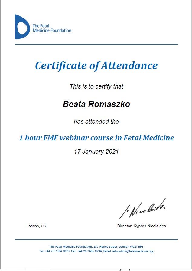 The Fetal Medicine Foundation